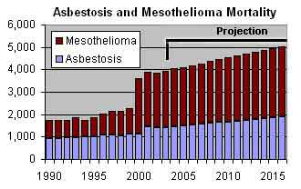 Asbestos Health Effects 8
